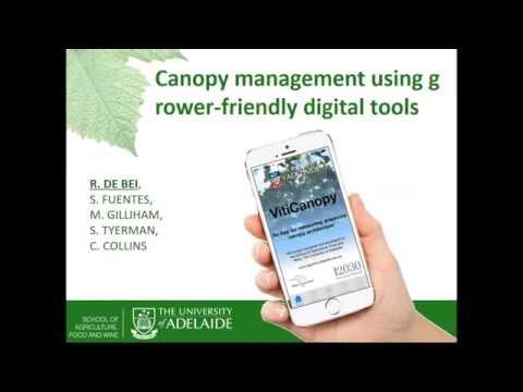 Canopy management using grower friendly digital tools (AWRI webinar)