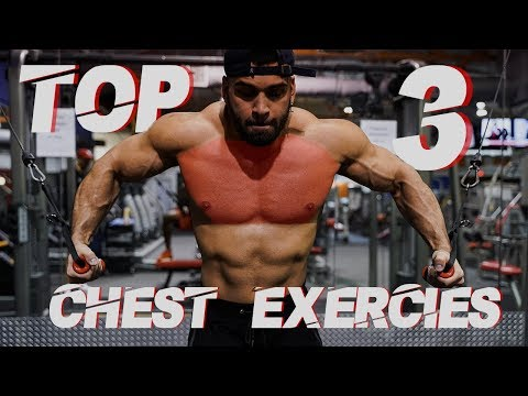 TOP 3 EXERCISES FOR LOWER CHEST   GERARDO GABRIEL
