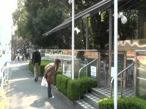 Tokyo Walking #12: Around Shibakoen