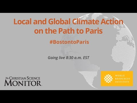 Global and Local Climate Action on the Path to Paris
