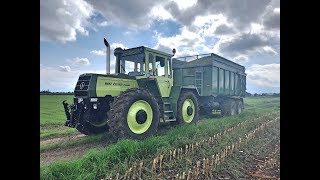 MB Trac 1300 Maisernte 2018 Soundvideo