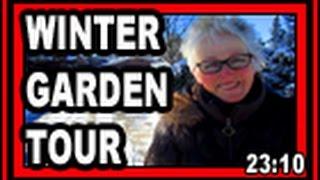 Winter Garden Tour - Wisconsin Garden Video Blog 743