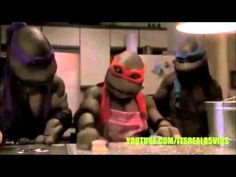 NIGGA TURTLES EPISODES 1,2,3 AND 4