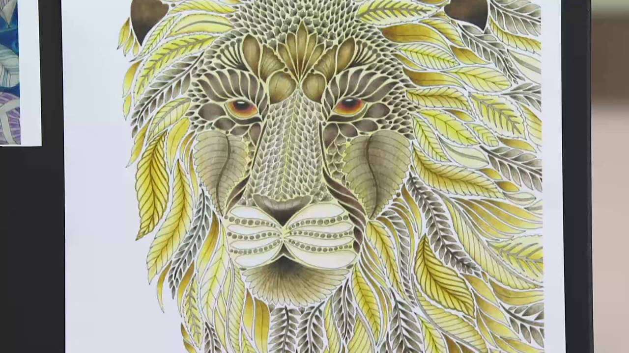 Millie Marotta Wild Savannah Adult Coloring Books Journal Set On QVC