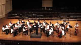 Busy as a Bee | Washington MS Beginning Strings | 2011 HASTA Parade of Orchestras