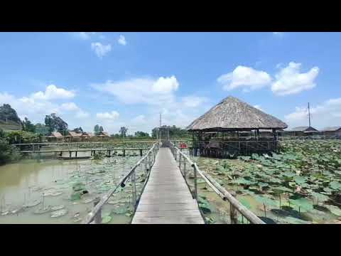 Khu du lịch sinh thái Mỹ Phước Thành, Thành Phố Cao Lãnh, Đồng Tháp tháng 04.2021