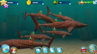 Fish Farm 3 | Level 103 - 200 Whale Shark | Update #14