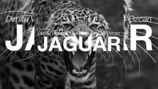 Repeat youtube video Dimitri Vegas & Like Mike vs. Ummet Ozcan - Jaguar (Original Mix)