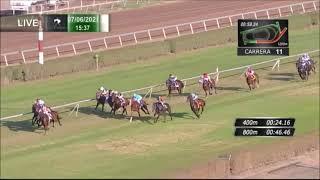 Vidéo de la course PMU PREMIO EL SOMBRA