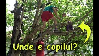 Traseu de aventura in copac pentru copil mic - Copilarie in gradina (5)