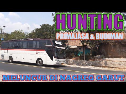 hunting-bus-budiman-dan-primajasa-di-nagreg-garut