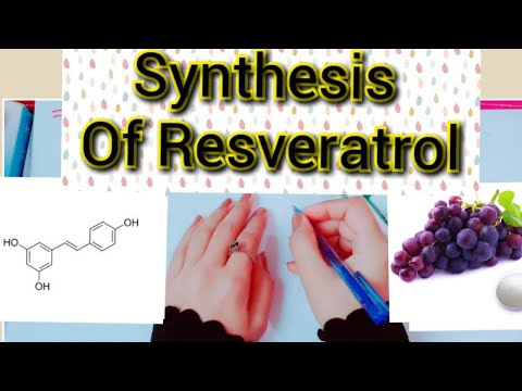 Mechanism For The Synthesis Of Natural Resveratrol| Derivatives Of Phenolics| Step By Step Guide |