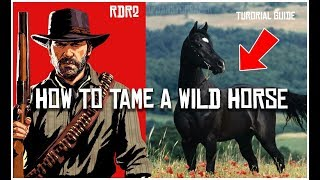 HOW TO TAME A WILD HORSE IN RED DEAD REDEMPTION 2