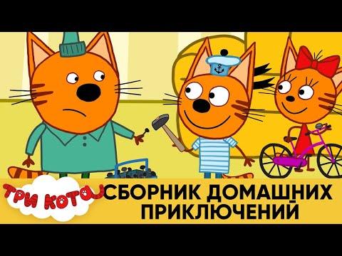 Три Кота | Сборник домашних приключений | Мультфильмы для детей - Видео онлайн