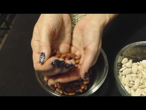 ASMR Request ~ Sifting/Handling Dried Beans ~ No Talking