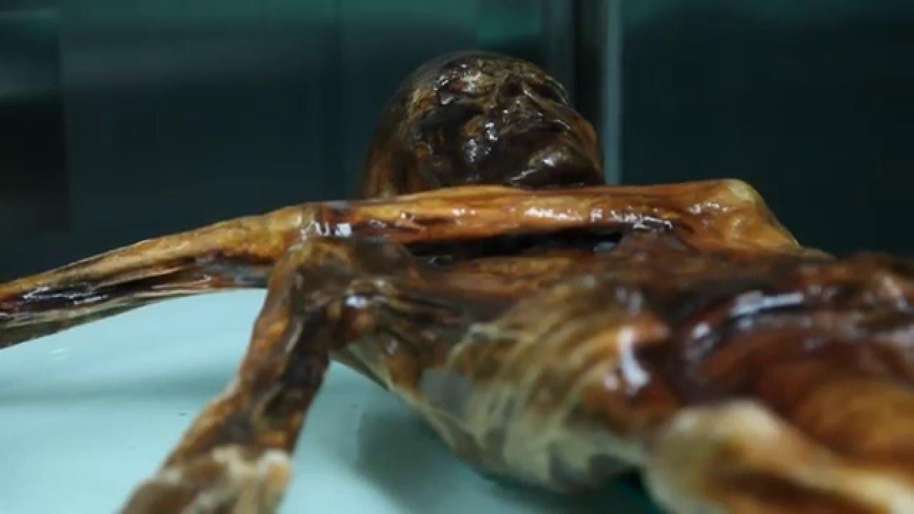 Ötzi Steinzeit