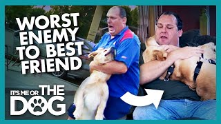 Owner Learns to Love His Dog   It's Me or the Dog