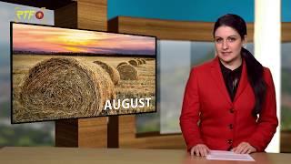 Jahresrückblick - August 2019