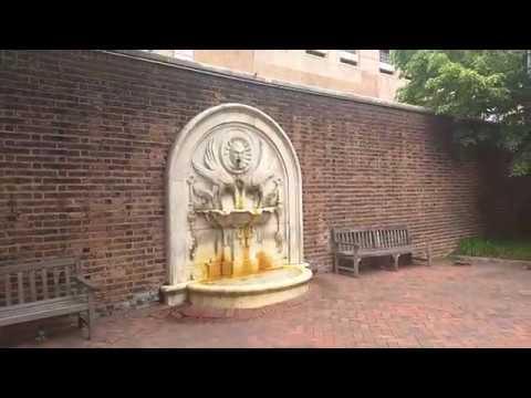 Филадельфия  Сквер с фонтаном. 2019 год.
