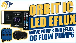 Get in the LOOP with Orbit IC LED eFlux Wave Pumps and eFlux DC Flow Pumps HD