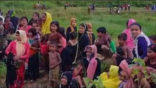 মিয়ানমারের রাখাইন রাজ্যে আবারো রোহিঙ্গা মুসলমানদের নির্যাতন সীমান্ত দিয়ে বাংলাদেশে আসছে রোহিঙ্গারা
