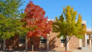 **Plant a Green Ash Tree*++*Fast Growing Tree List++Shade Trees 2016++