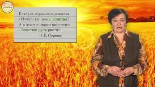 Русский 6 класс. Лексика и фразеология