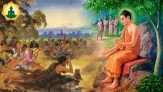 """Kể Truyện Phật Giáo """"Tập Cuối Cực Hay"""" Bài Học Đắt Giá Cho Cuộc Đời _  Audo Truyện Phật Giáo"""