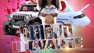 QUIERO LLEVARTE - Nelpa Music x Ricky Way x ADony El De la pauta x Danni El Poeta