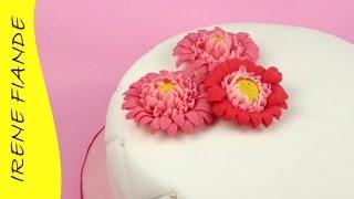 Цветы из мастики для торта.  Гербера из мастики