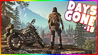 Days gone gameplay PS4 PRO (+18) #18