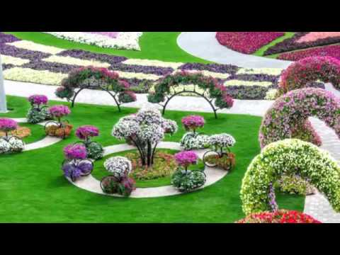 HD Most Beautiful And Biggest Natural Flower Garden In The World Dubai Miracle Gardens