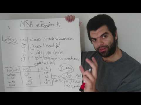 Modern standard Arabic (MSA) vs Egyptian Arabic simplified (for English speakers)