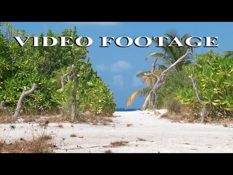 Stock Footage HD. Tropical Island.