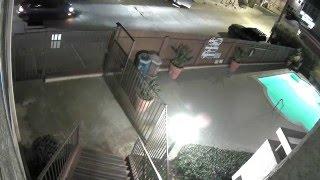 Stolen Bikes In Bay Park (San Diego CA)
