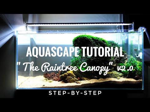 """aquascape-tutorial---""""the-raintree-canopy""""-v2.0--rescaping-step-by-step-setup"""
