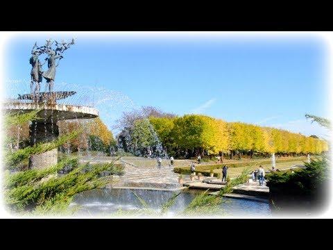 2019黄葉・紅葉まつり【国営昭和記念公園】(東京都立川市)[4K]