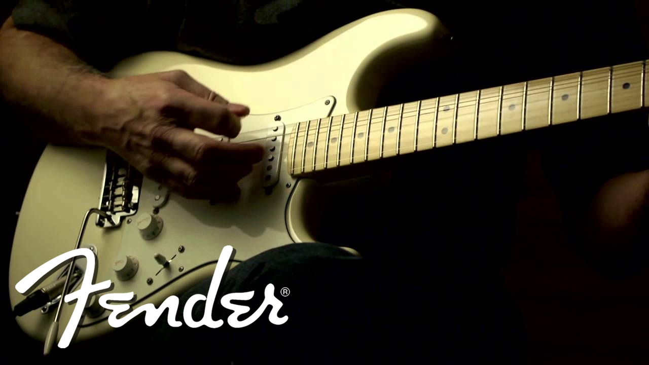 Fender Custom Shop Texas Special Stratocaster Pickups Clean