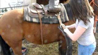 How to western saddle your horse