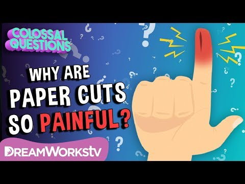 Why Do Paper Cuts Hurt So Much?  COLOSSAL QUESTIONS