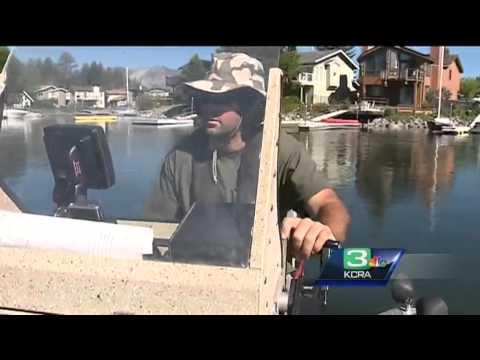 Tahoe Researchers Shock Water To Rid Lake Of Goldfish, Bass