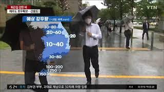 YTN 권혜인 기상캐스터 21050…