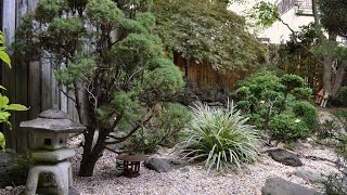 A Japanese-Style Backyard Garden in Brooklyn
