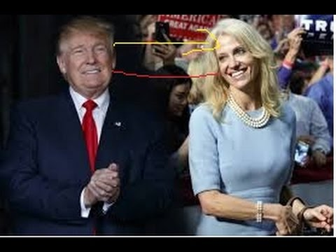 breaking news ! donal trump campaign manager what to say about him?!!!!