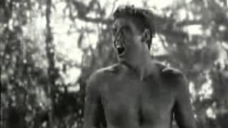 Крик тарзана видео.flv(Клич Тарзана., 2012-05-14T02:14:12.000Z)