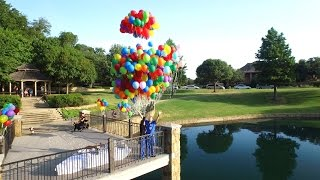 Best Proposal Ever!!! Inspired by Pixar