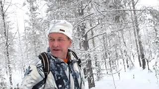 Охота на лося зимой на лыжах видео