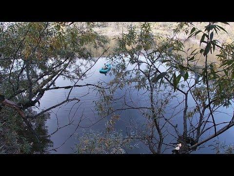 Рыбалка Мыски.  На щучьем озере. Щука заставила залезть на дерево.