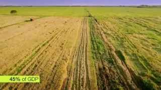 "Video Green Journey ""Ethiopia's Agricultural Revolution"" download MP3, 3GP, MP4, WEBM, AVI, FLV April 2018"