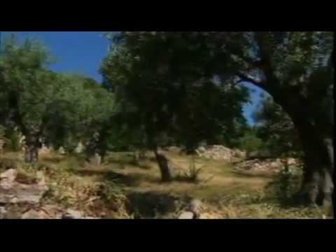 Mont Athos (Άγιον Όρος) - la république des moines